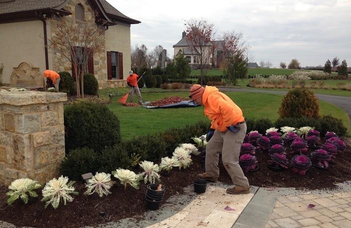 front backyard landscaping ideas edmonton