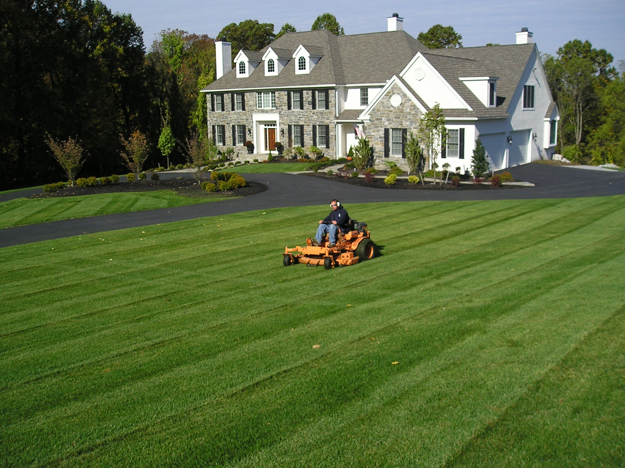 Basil green landscaping professional lawn care company for Lawn and garden services